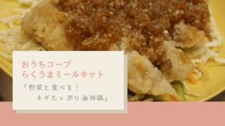 【時短】おうちコープらくうまミールキット「野菜と食べる!ネギたっぷり油淋鶏」作ってみた【口コミレビュー】
